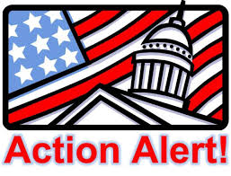 Action Alert! Speak Out Against Gun Violence Now!